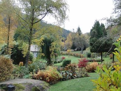 Teil vom Garten