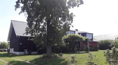 Landhaus auf Usedom, kontinuierlich ehm. rest.   Bauernhof auf ca. 1400 m² grün