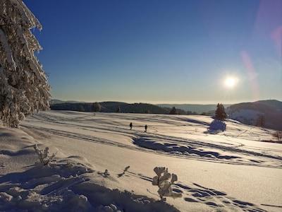 Nos pistes de ski de fond et de raquettes_janvier 2021