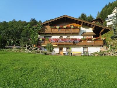 Hart im Zillertal, Tyrol, Austria