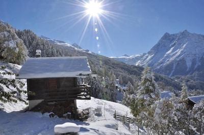 La Petite Ourse en hiver
