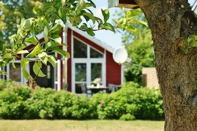 unter dem Apfelbaum