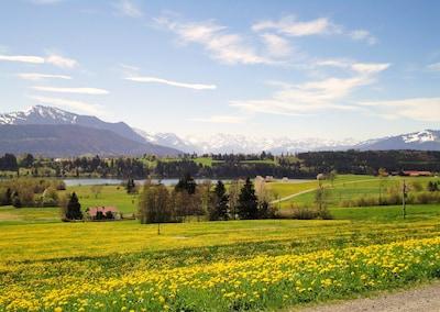 unsere Aussicht auf die Allgäuer Berge mit dem Niedersonthofener See