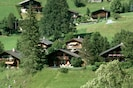 Your Chalet surrounded by nature