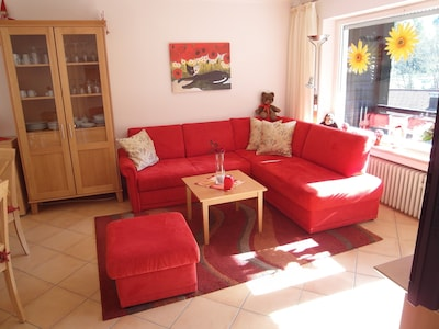 Wohnung 203 - Bequeme Couch mit ausziehbarer Schlaffläche