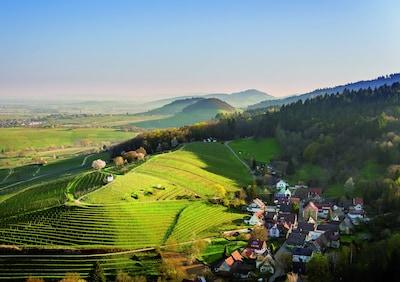 Muggardt (Foto freundliche Überlassung durch WG Britzingen/ Ch.Dorner)