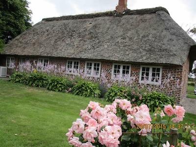 Schönes Garten