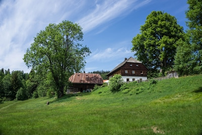Hatzingerhof mit 700jähriger Linde