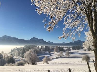 Die verschneite Bergwelt des Allgäus