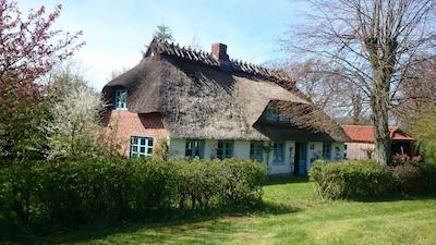 Niesgrau, Schleswig-Holstein, Duitsland