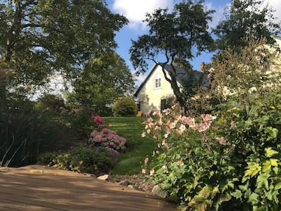 hundefreundlicher Garten mit großem Naturteich