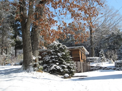 Winter Scene from Drive