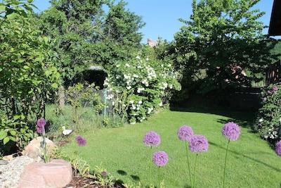 Du jardin fleuri vue sur le château de Kintzheim
