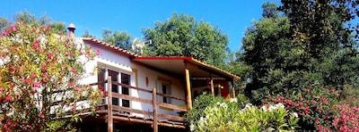 Jardim do Largo Augusto Fuschino, Santiago do Cacem, Setúbal District, Portugal