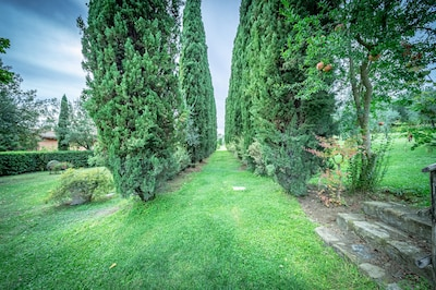 Villa Rita - Bellissima Villa Toscana con piscina