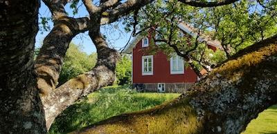 Blick auf die Villa Lycka