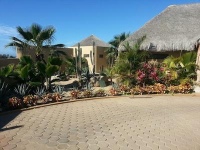 Desert and Tropical Gardens