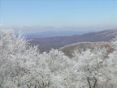 Winter brings it's own beauty.