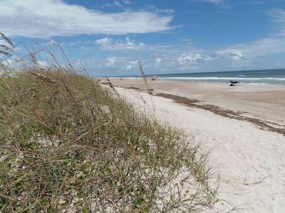 13 miles, uncommerical beach loaded/w seashells, sharks teeth, 50 footsteps away