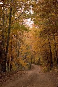 Comté de Madison, Arkansas, États-Unis d'Amérique