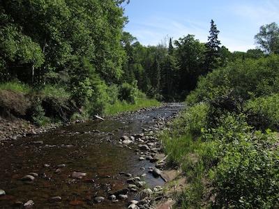 Gratiot River