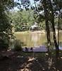 Lake view summer