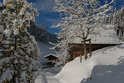 Mindstens 60cm Schnee haben wir, herrlich!