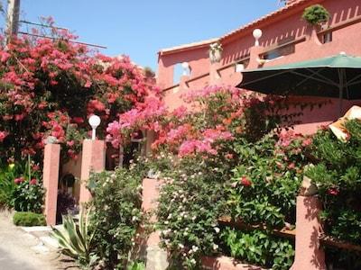 Entrée sur une grande terrasse