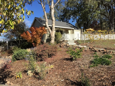 Bouverie Preserve, Glen Ellen, California, United States of America