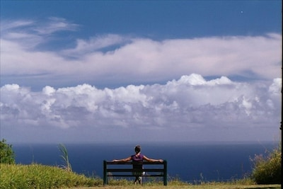 Watch whales and dolphins from your private bench overlooking Pacific Ocean