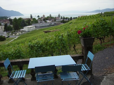 Vine and Wine Museum, Aigle, Canton of Vaud, Switzerland