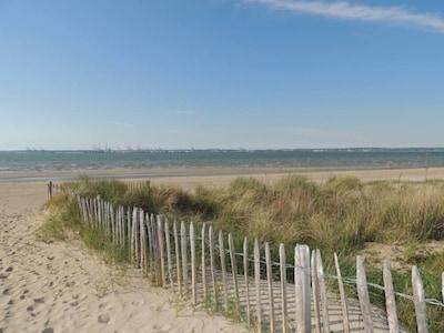 Plage sauvage de sable fin à 2 minutes à pied de la propriété.