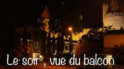 Le Musee de la Torture de Carcassone, Carcassonne, Aude, France