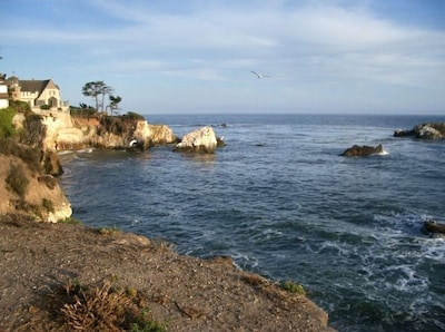 Shell Beach coastline at the end of our block!