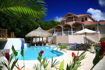 Beautiful Ocean View Pool area, Tiki Swim-up Bar and  Veranda.