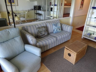 Living Area - Queen Sofa Bed and Recliner!