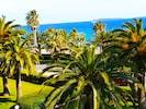 les palmiers du jardin et au loin l'Île Sainte Marguerite