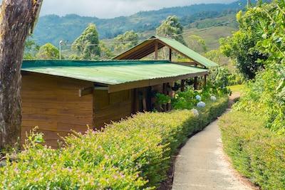 San Isidro de El General, San José (province), Costa Rica