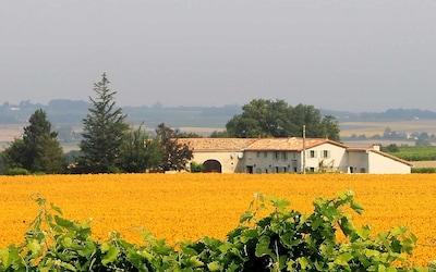 Léoville, Charente-Maritime (département), France