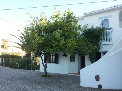 Aussenansicht Eingang (mit Zitronenbaum)