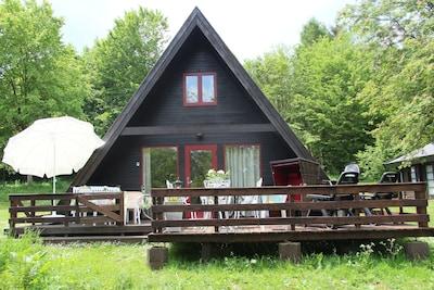 Spitzdach-Ferienhaus im Naturpark am Twistesee in absoluter Waldlage