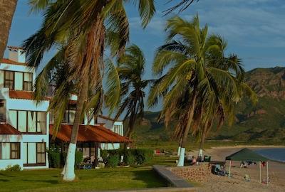 Beachfront porch under the palms.