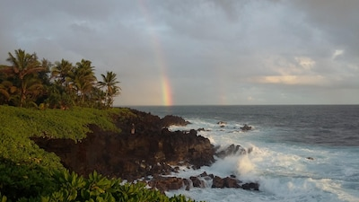 Morning View from Kahakai Park.  A 10 minute walk here from the house.