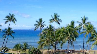 Maui Fish Pipe, Kihei, Hawaii, United States of America