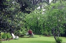 Native Hawaiian Plants and Botanical Garden