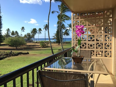 Lovely sunrise, ocean, mountain and park views from the lanai.