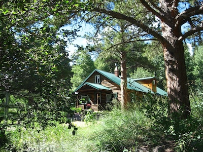 Any season of the year, log cabin living is magical and an adventure!  The beautiful Cascading Creek Log Cabin is nestled in the small mountain community of Allenspark CO, 8,500ft.
