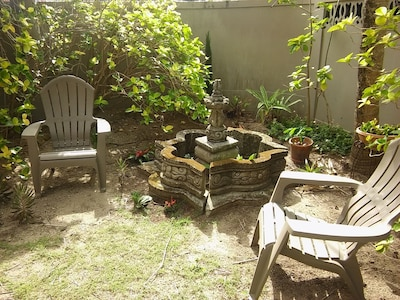 Our tranquil garden....