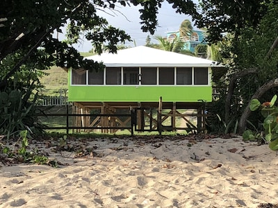 View of house from the  Beach.  Walk right out onto your beautiful sandy beach!