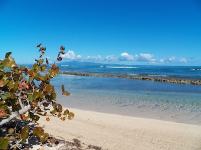 50 Steps to the your Secluded, Sandy, Beach with Puerto Rico in the distance